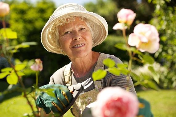 Senioren WG Lichtsinn Gartenzeit